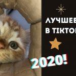 Топ 10 тикток видео 2020 года